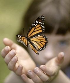 Niña autista con mariposa
