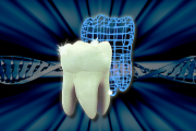 ¿El esmalte dental puede regenerarse?